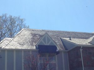 roof cleaning in chappaqua