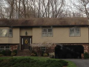 roof cleaning, black streaks, mold, mildew, fungus, westchester, armonk, chappaqua