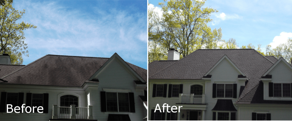 black straks, roof stains, stains, roof shampoo, roof cleaning, westchesterpowerwashing.com, clean roof, power wash, roof wash, wash roof